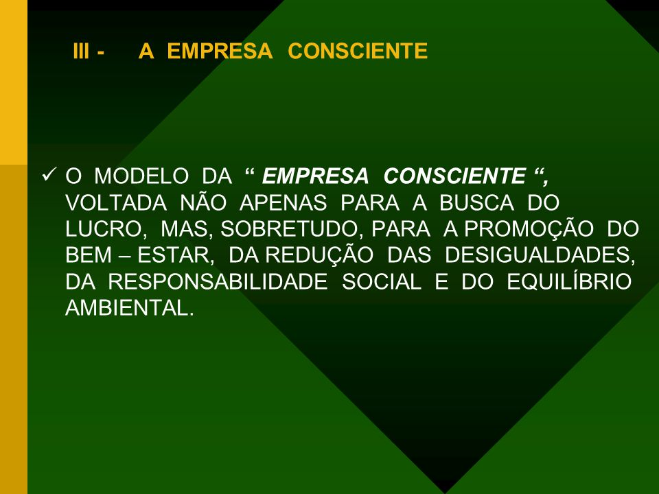 III - A EMPRESA CONSCIENTE