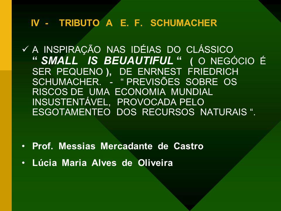 IV - TRIBUTO A E. F. SCHUMACHER