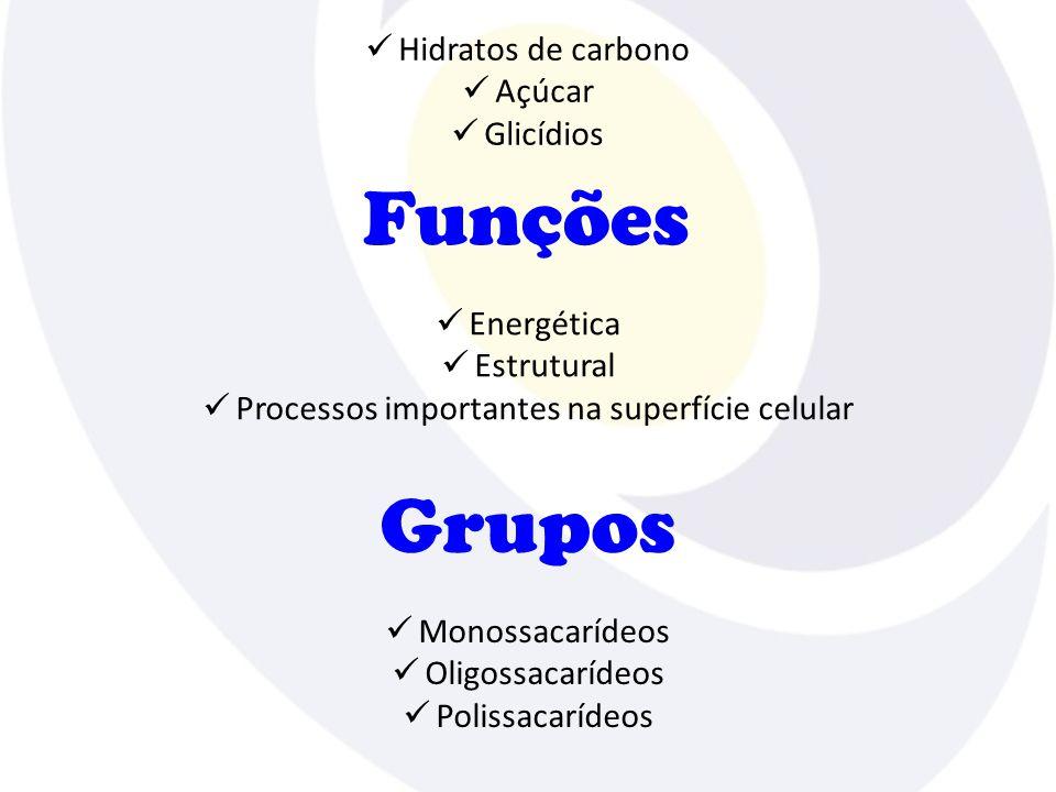 Processos importantes na superfície celular