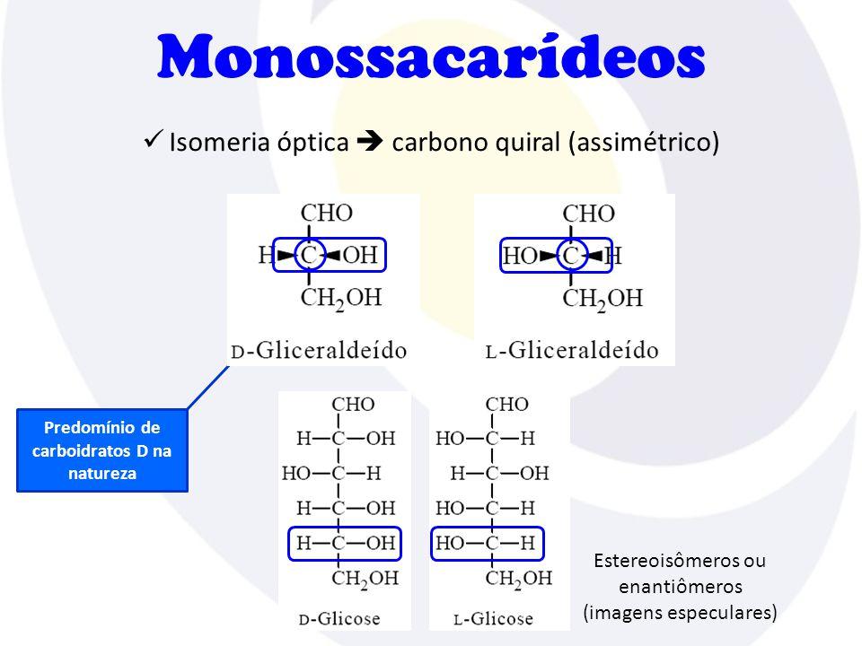 Predomínio de carboidratos D na natureza