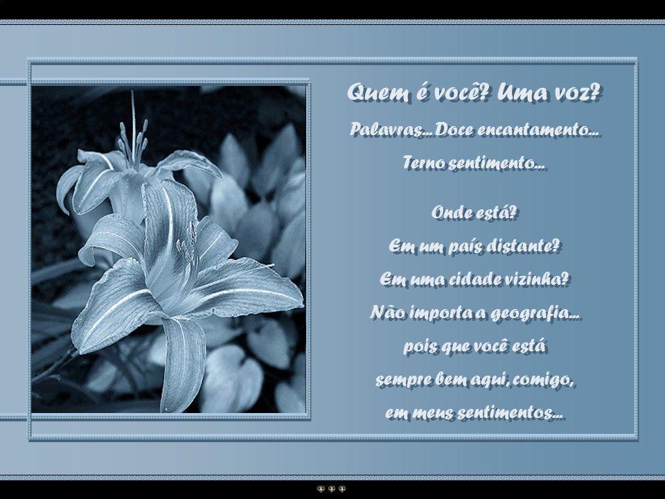 Quem é você Uma voz Palavras... Doce encantamento...