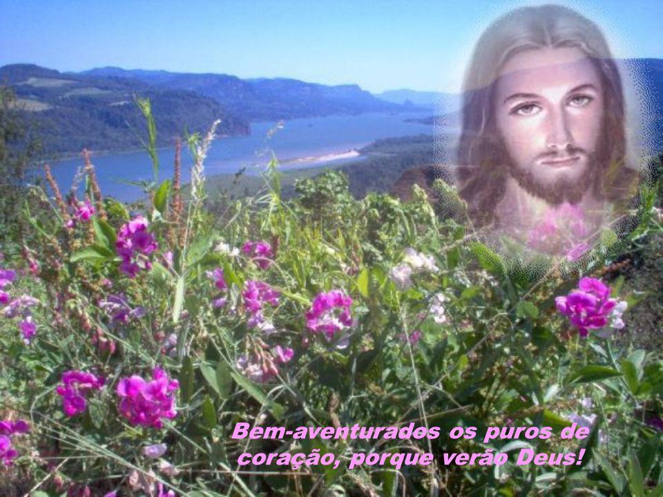 Bem-aventurados os puros de coração, porque verão Deus!
