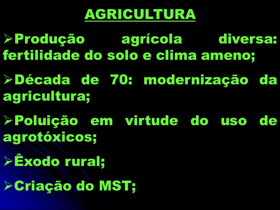 AGRICULTURA Produção agrícola diversa: fertilidade do solo e clima ameno; Década de 70: modernização da agricultura;