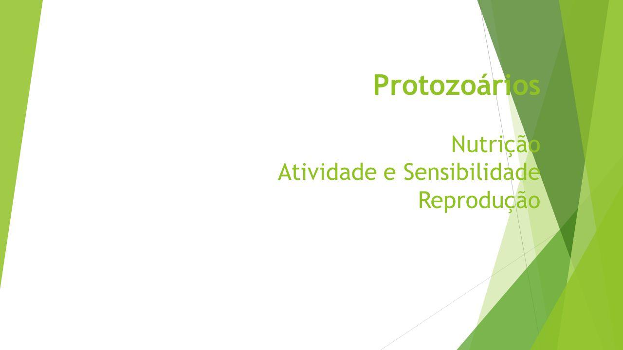 Protozoários Nutrição Atividade e Sensibilidade Reprodução