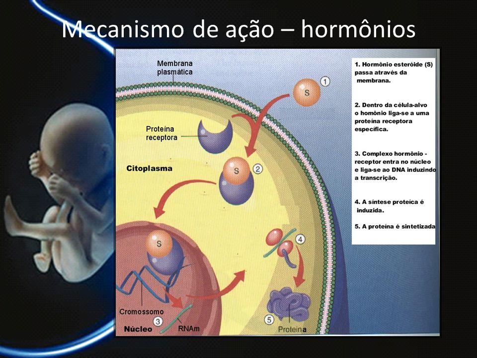 Mecanismo de ação – hormônios esteroidais