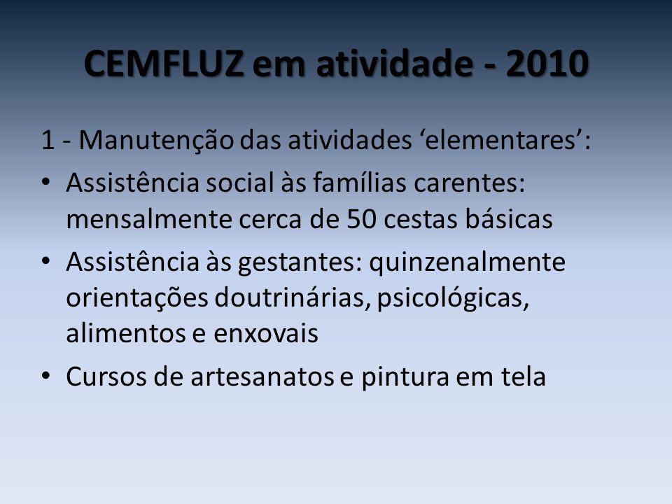 CEMFLUZ em atividade - 2010 1 - Manutenção das atividades 'elementares':