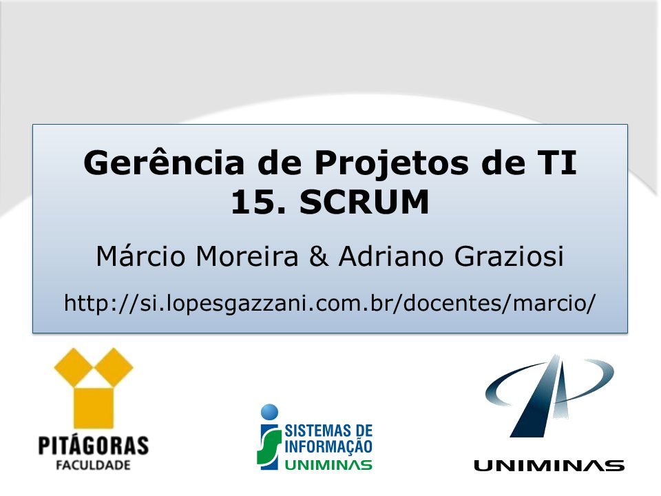 Gerência de Projetos de TI 15