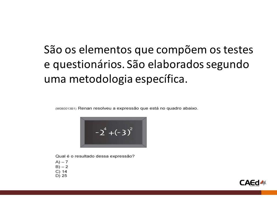 São os elementos que compõem os testes e questionários