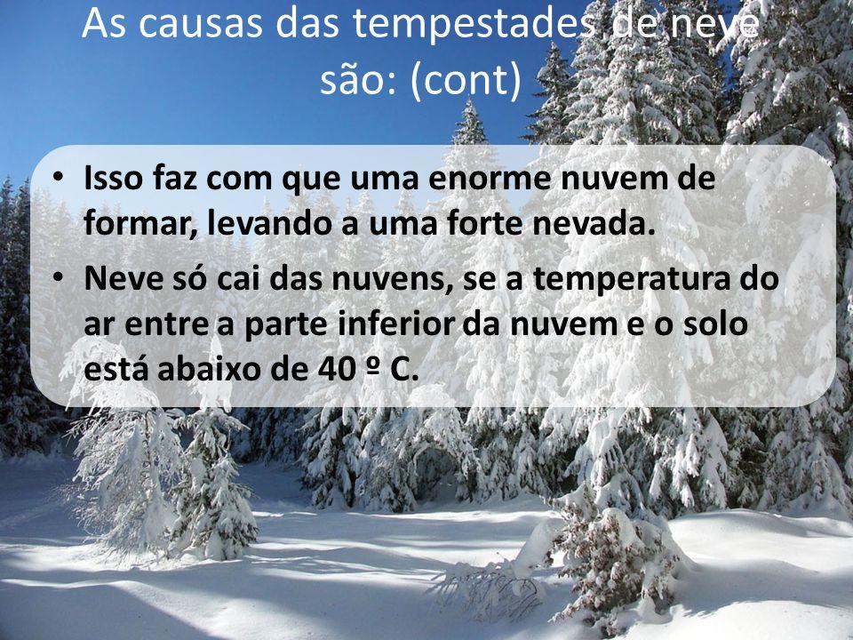 As causas das tempestades de neve são: (cont)