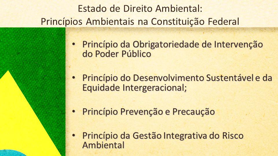 Estado de Direito Ambiental: Princípios Ambientais na Constituição Federal