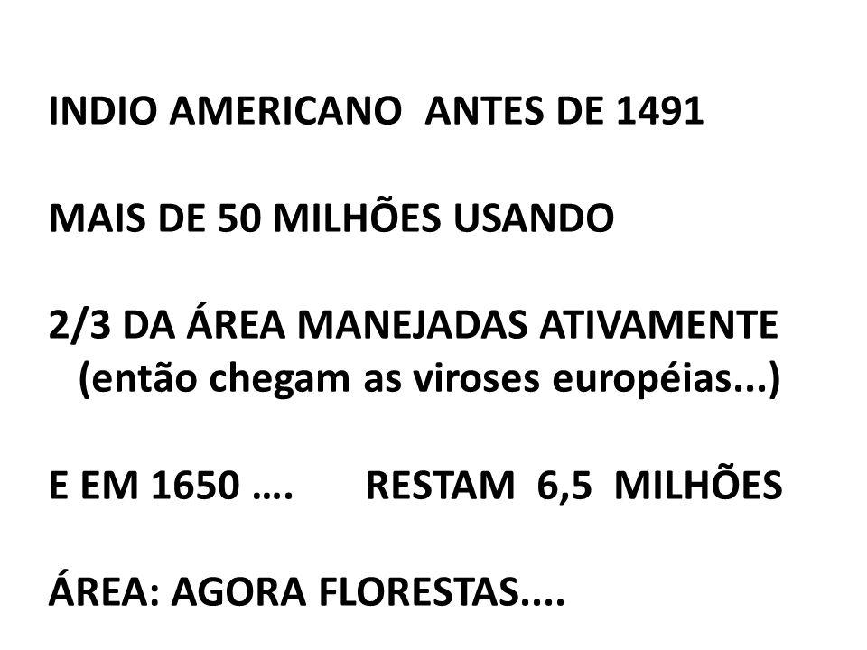 INDIO AMERICANO ANTES DE 1491