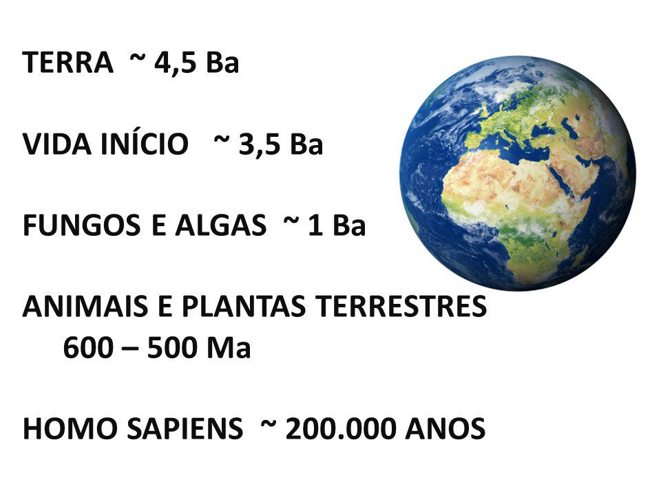 TERRA ~ 4,5 Ba VIDA INÍCIO ~ 3,5 Ba. FUNGOS E ALGAS ~ 1 Ba. ANIMAIS E PLANTAS TERRESTRES 600 – 500 Ma.