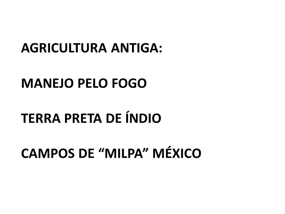 AGRICULTURA ANTIGA: MANEJO PELO FOGO TERRA PRETA DE ÍNDIO CAMPOS DE MILPA MÉXICO