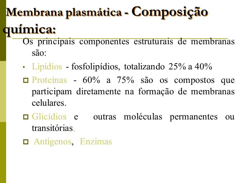 Membrana plasmática - Composição química: