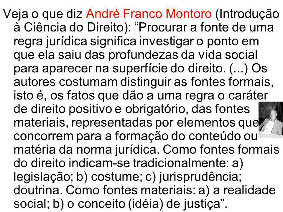 Veja o que diz André Franco Montoro (Introdução à Ciência do Direito): Procurar a fonte de uma regra jurídica significa investigar o ponto em que ela saiu das profundezas da vida social para aparecer na superfície do direito.