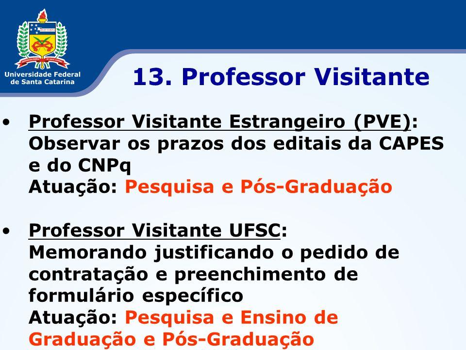 13. Professor Visitante Professor Visitante Estrangeiro (PVE):