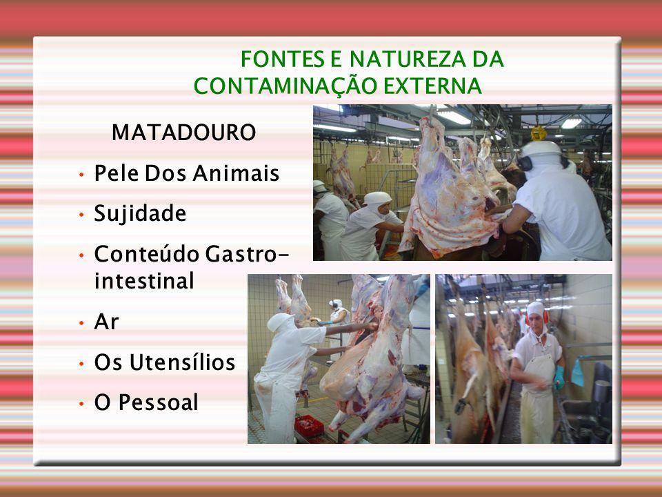 FONTES E NATUREZA DA CONTAMINAÇÃO EXTERNA
