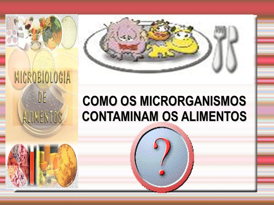 COMO OS MICRORGANISMOS CONTAMINAM OS ALIMENTOS