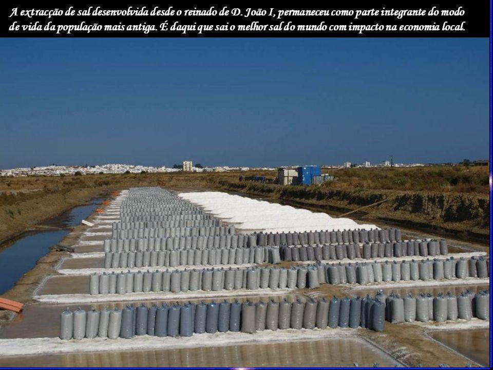 A extracção de sal desenvolvida desde o reinado de D