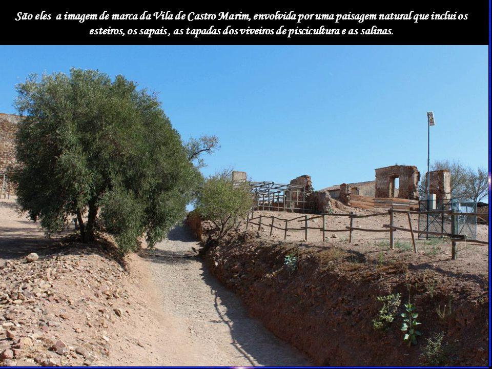 São eles a imagem de marca da Vila de Castro Marim, envolvida por uma paisagem natural que inclui os esteiros, os sapais , as tapadas dos viveiros de piscicultura e as salinas.