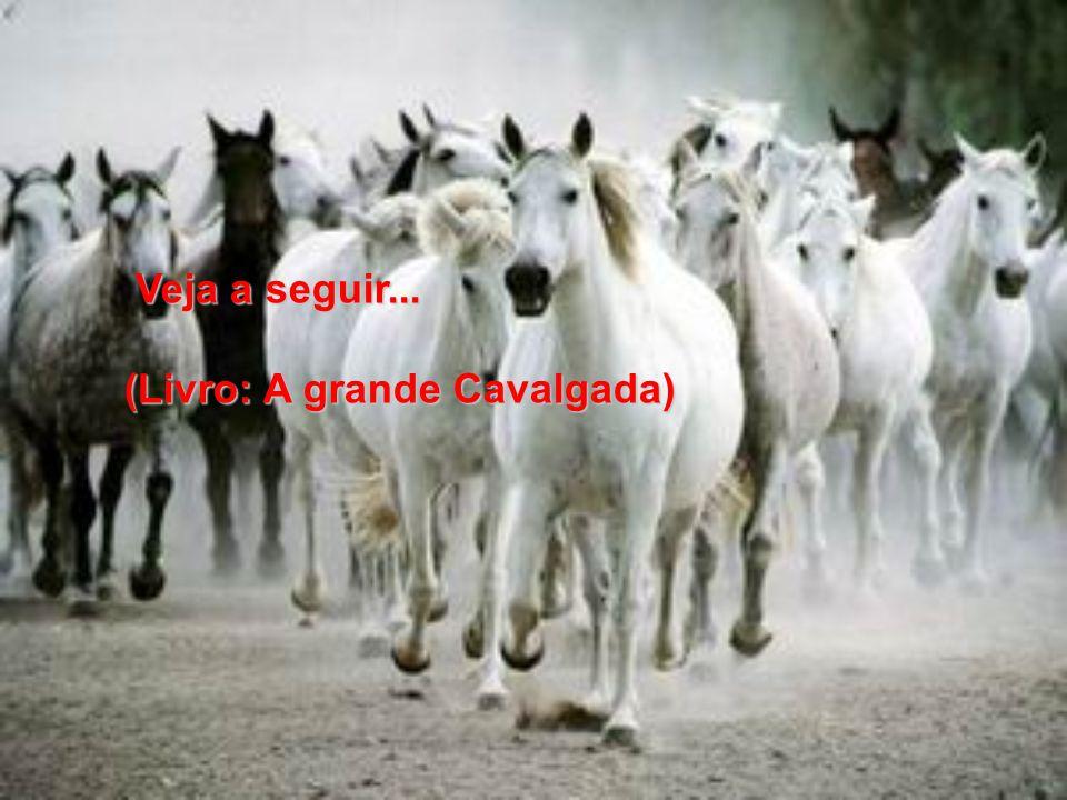 (Livro: A grande Cavalgada)