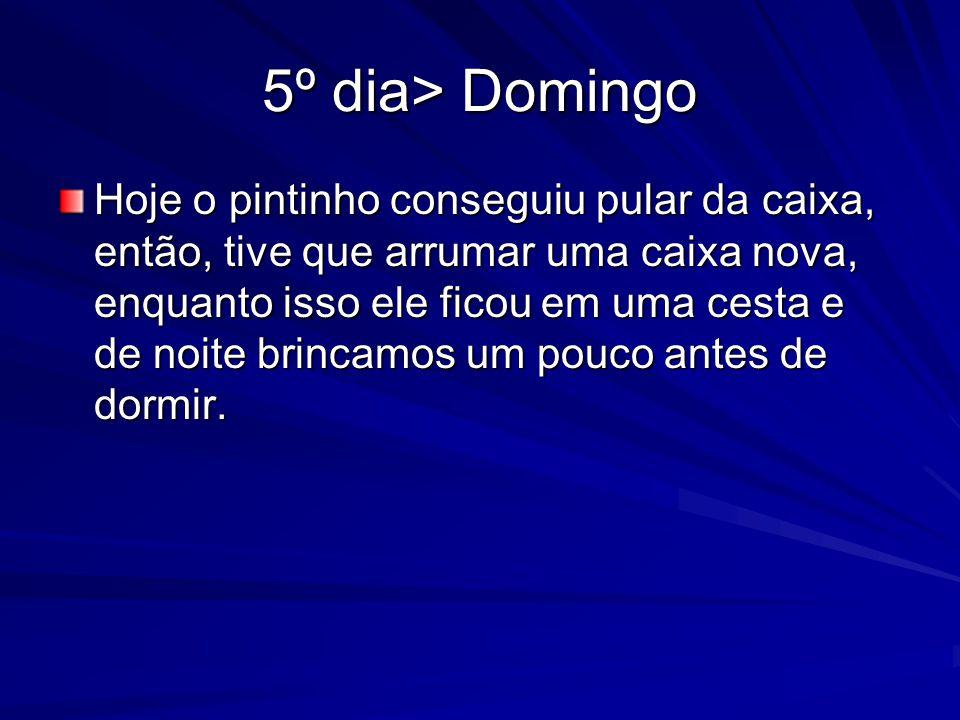 5º dia> Domingo
