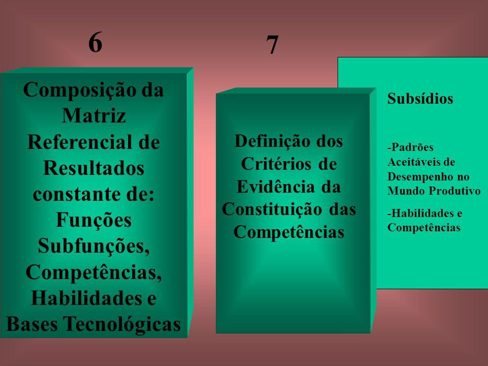 Definição dos Critérios de Evidência da Constituição das Competências