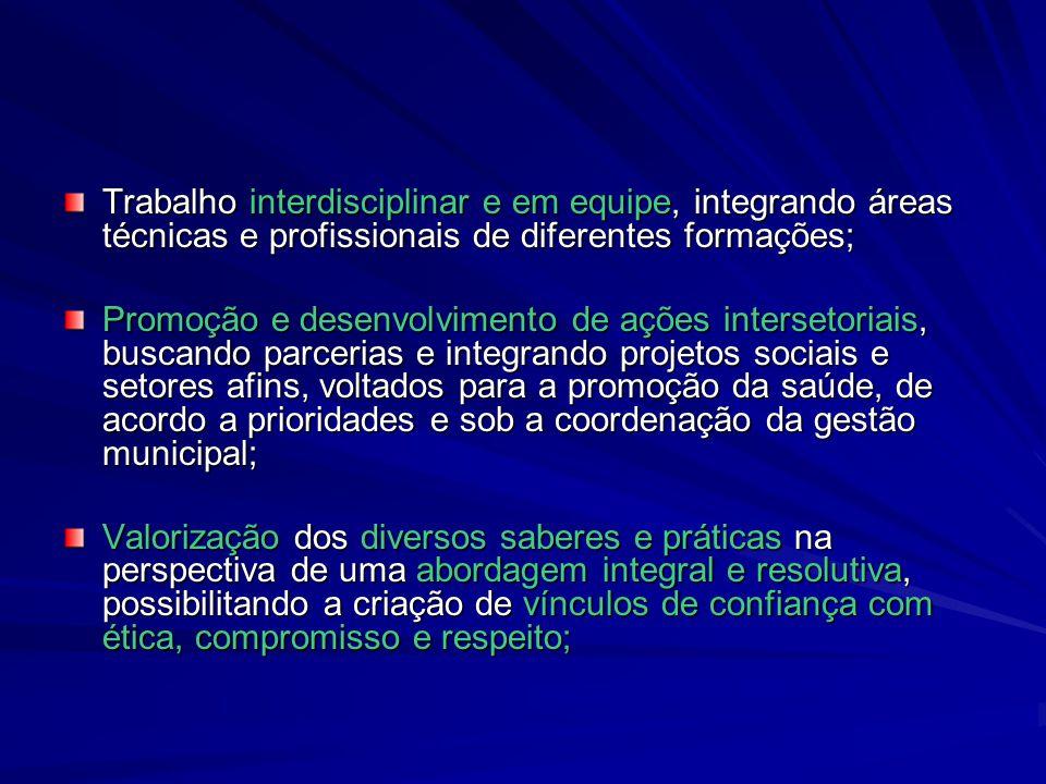 Trabalho interdisciplinar e em equipe, integrando áreas técnicas e profissionais de diferentes formações;