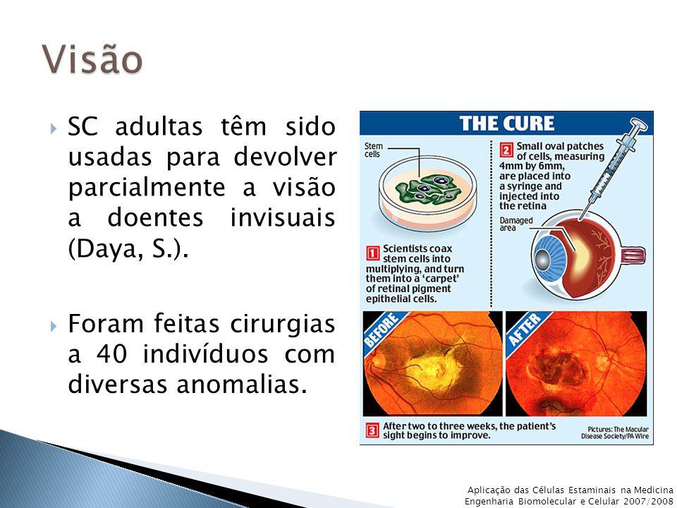 Visão SC adultas têm sido usadas para devolver parcialmente a visão a doentes invisuais (Daya, S.).