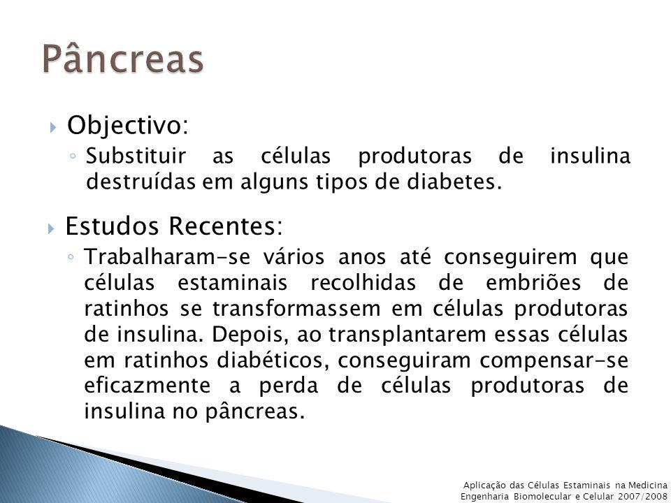 Pâncreas Objectivo: Estudos Recentes: