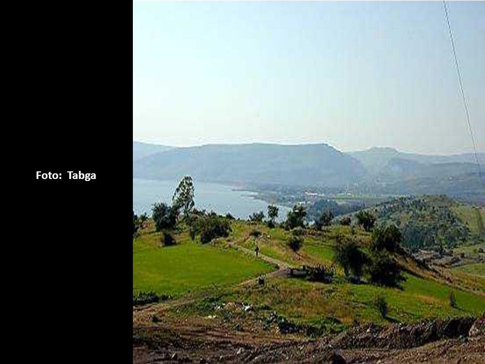 Foto: Tabga