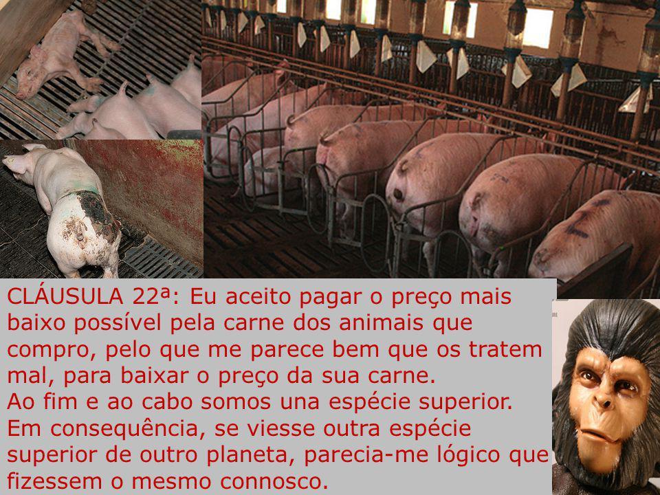 CLÁUSULA 22ª: Eu aceito pagar o preço mais baixo possível pela carne dos animais que compro, pelo que me parece bem que os tratem mal, para baixar o preço da sua carne.
