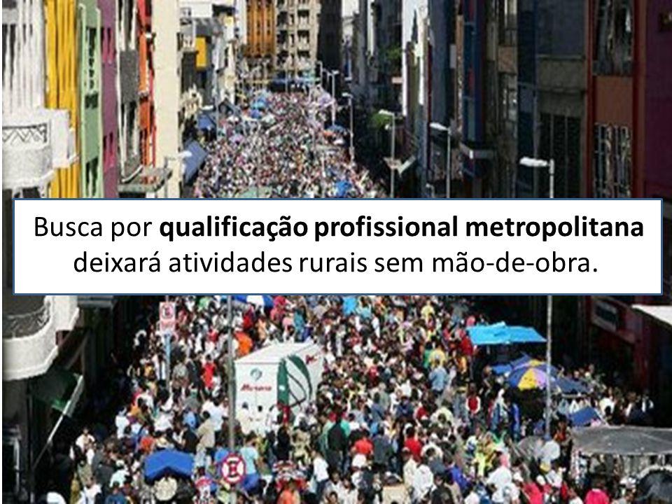 Busca por qualificação profissional metropolitana