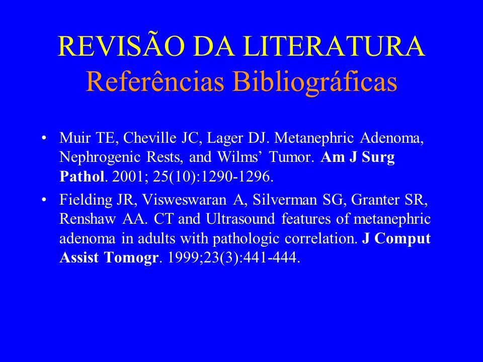 REVISÃO DA LITERATURA Referências Bibliográficas