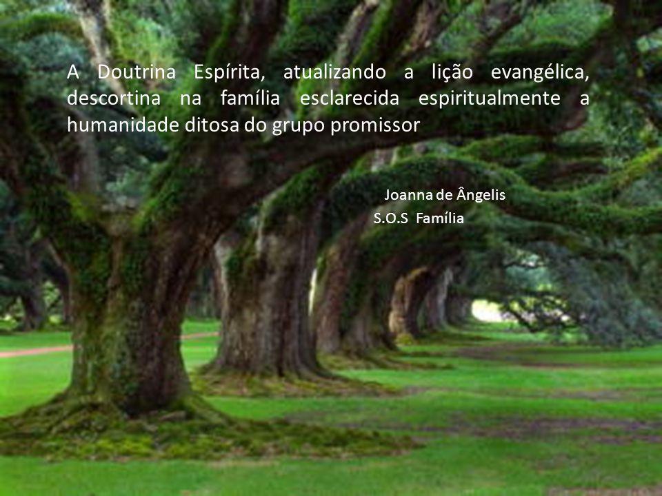 A Doutrina Espírita, atualizando a lição evangélica, descortina na família esclarecida espiritualmente a humanidade ditosa do grupo promissor