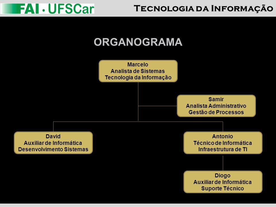 ORGANOGRAMA Marcelo Analista de Sistemas Tecnologia da Informação