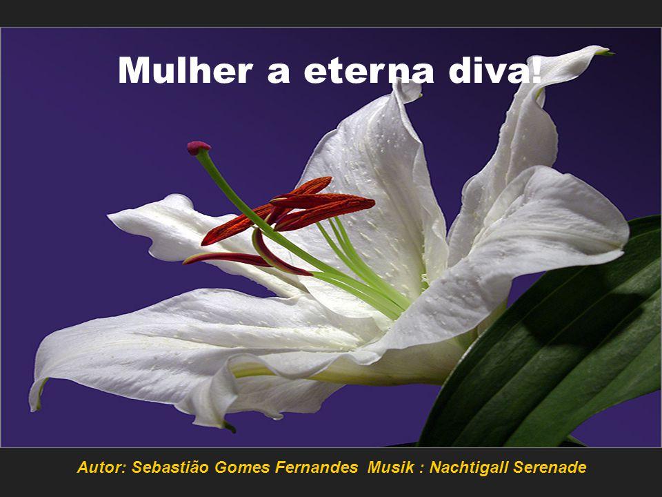 Autor: Sebastião Gomes Fernandes Musik : Nachtigall Serenade
