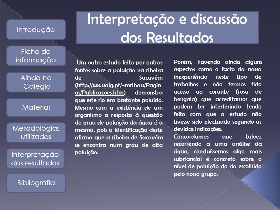 Interpretação e discussão dos Resultados