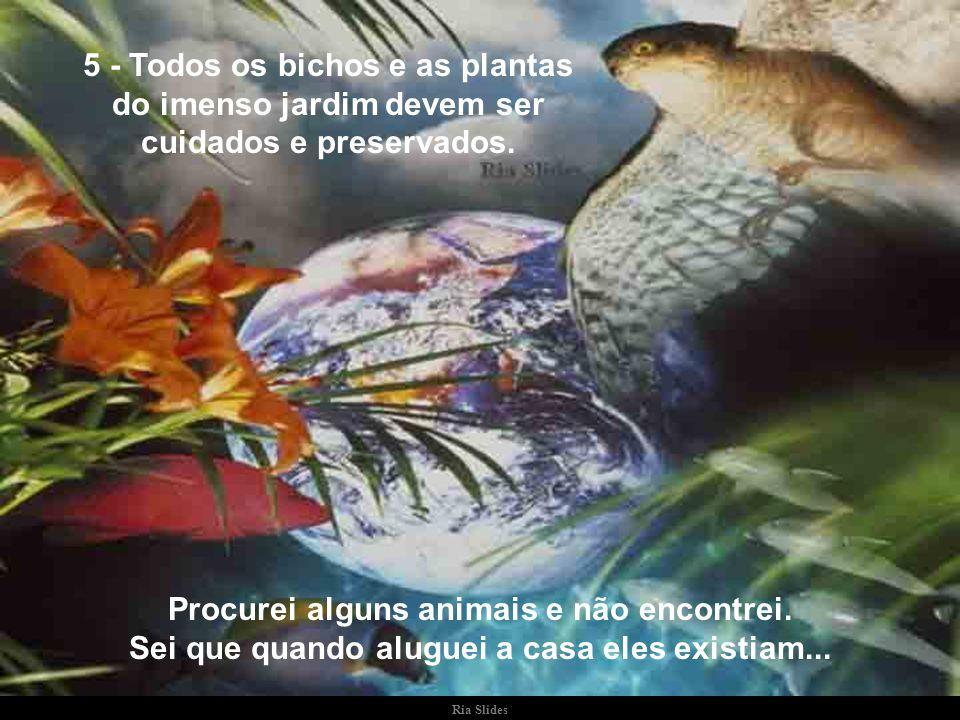 5 - Todos os bichos e as plantas do imenso jardim devem ser cuidados e preservados.