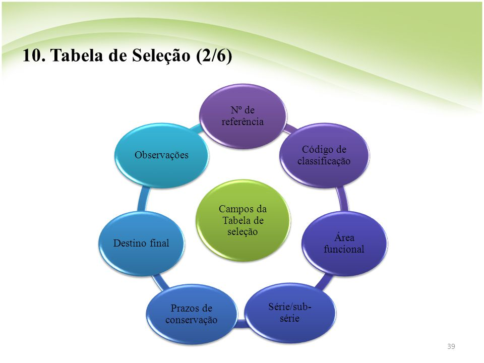 10. Tabela de Seleção (2/6) Campos da Tabela de seleção