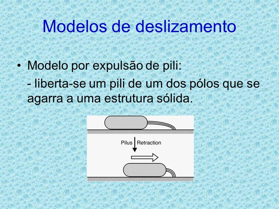 Modelos de deslizamento