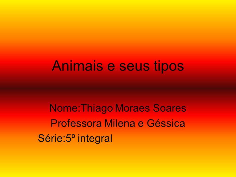 Animais e seus tipos Nome:Thiago Moraes Soares
