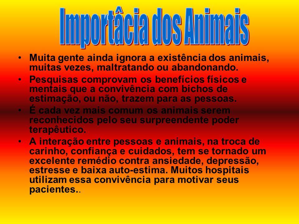 Importâcia dos Animais