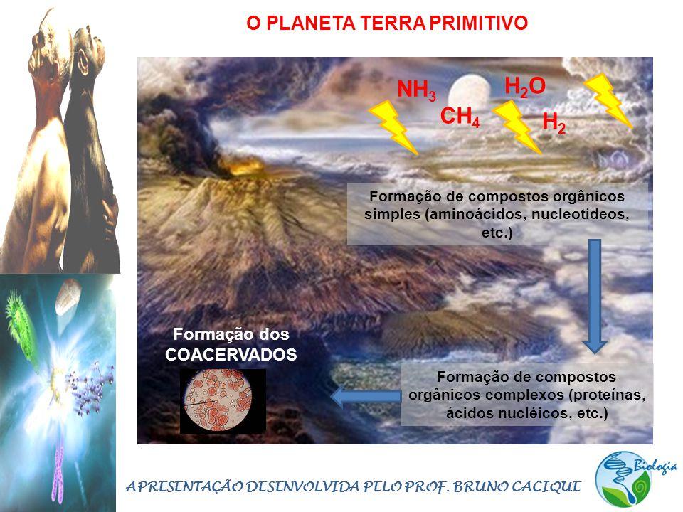 H2O NH3 CH4 H2 O PLANETA TERRA PRIMITIVO Formação dos COACERVADOS