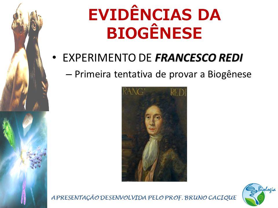 EVIDÊNCIAS DA BIOGÊNESE