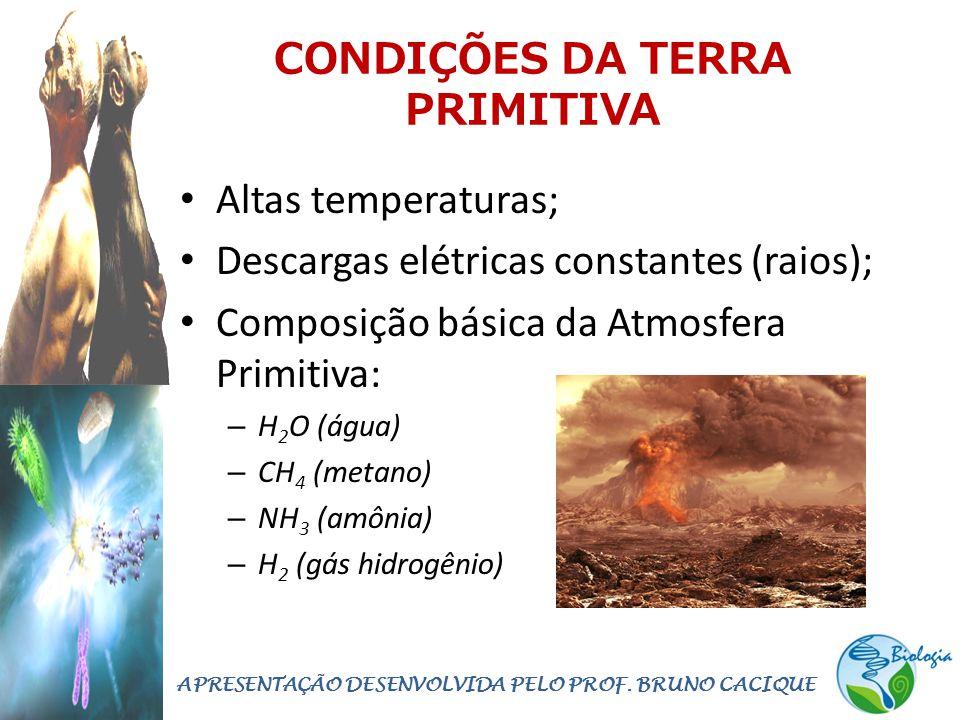 CONDIÇÕES DA TERRA PRIMITIVA