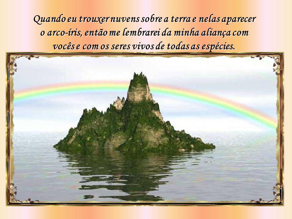 Quando eu trouxer nuvens sobre a terra e nelas aparecer o arco-íris, então me lembrarei da minha aliança com vocês e com os seres vivos de todas as espécies.