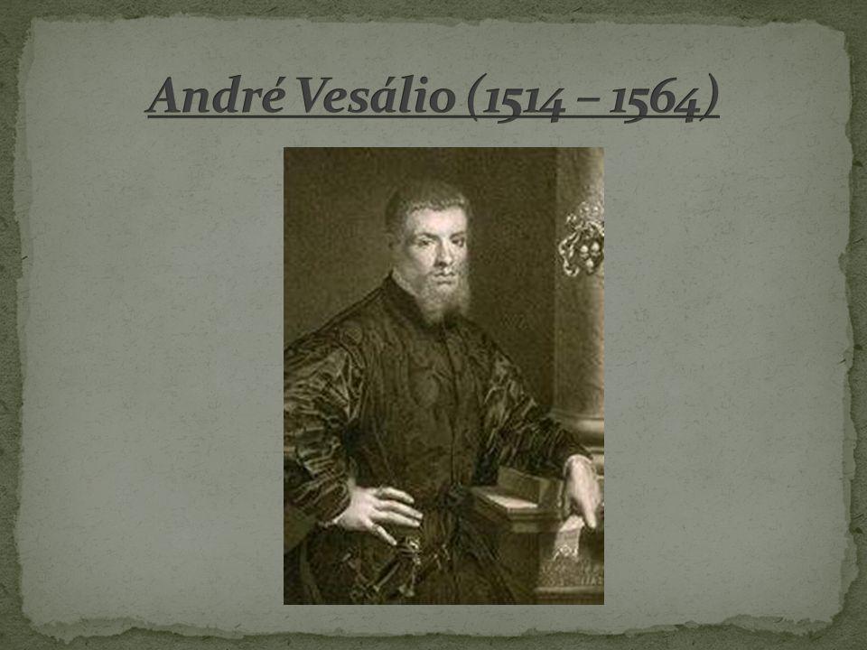 André Vesálio (1514 – 1564)