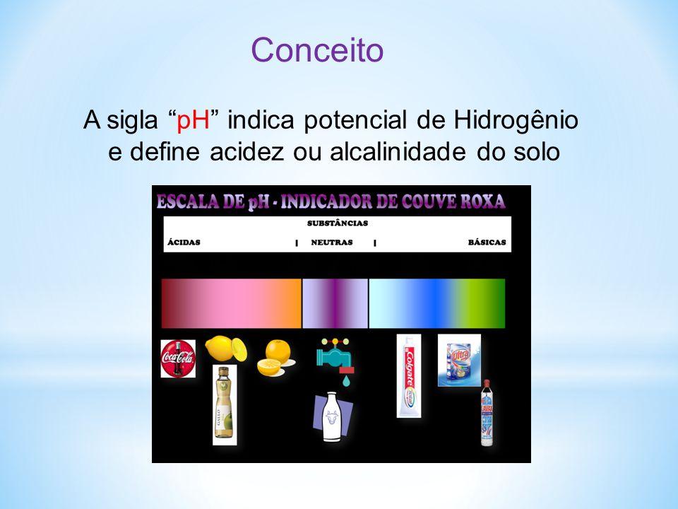 Conceito A sigla pH indica potencial de Hidrogênio
