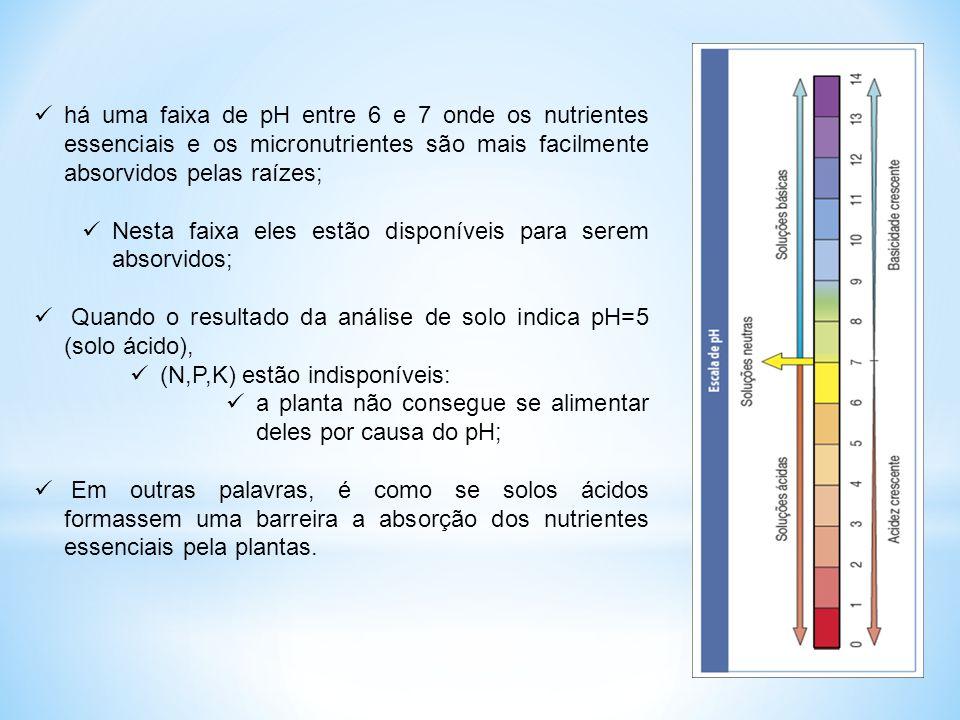 há uma faixa de pH entre 6 e 7 onde os nutrientes essenciais e os micronutrientes são mais facilmente absorvidos pelas raízes;